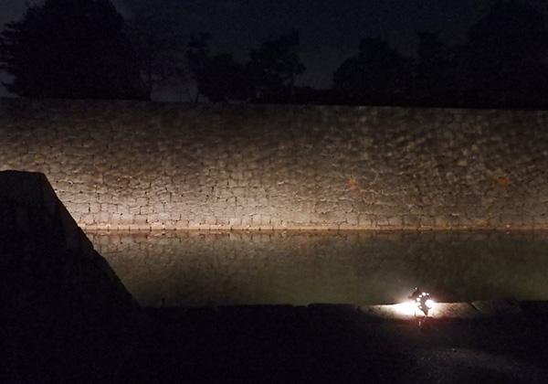 二条城 堀 ライトアップ
