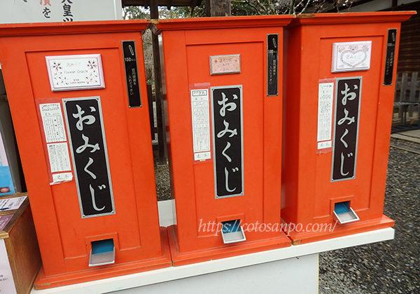 平野神社 おみくじ