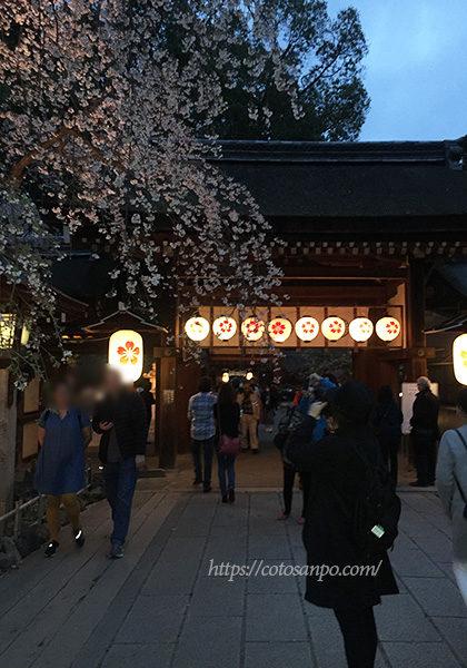 平野神社 桜 ライトアップ