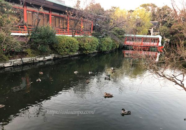 神泉苑 池