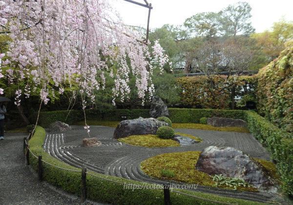 退蔵院 陰の庭
