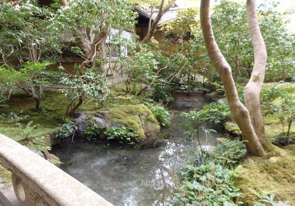 瑠璃光院 山露路の庭