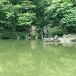 仙洞御所 南池