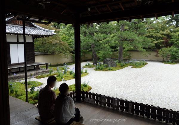 蘆山寺 デート