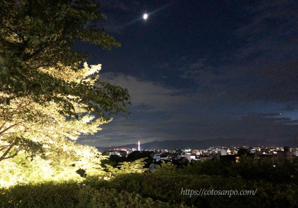 高台寺 見晴らし 景色