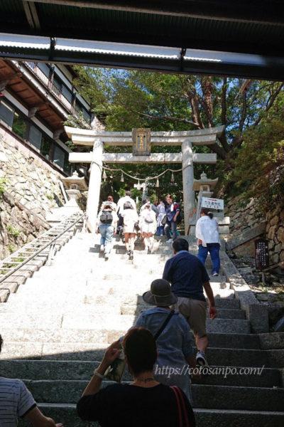 竹生島 階段