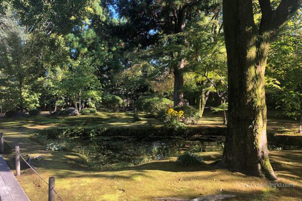 広隆寺 庭