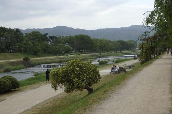 加茂川 植物園